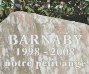 Barnaby-408x250