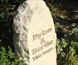 Dylan-bertie