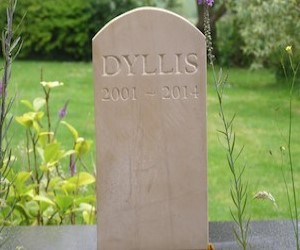 Dyllis