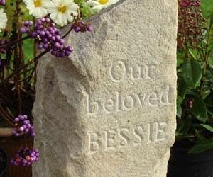 bessie-408x250
