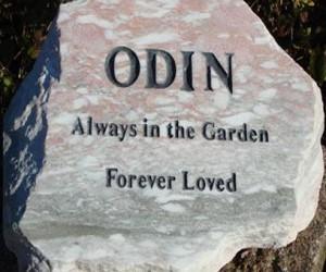 odin-408x250