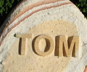 tom-408x250