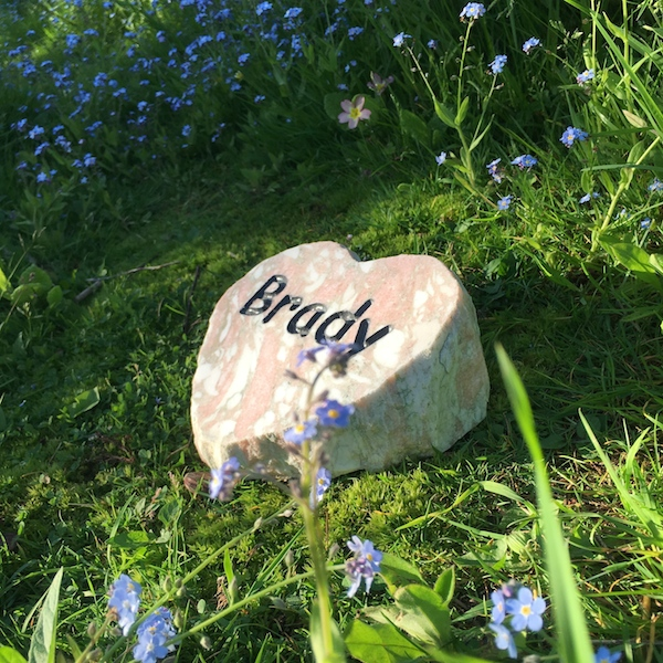 Pet Memorials in Stone. A Rose Marble Heart Plaque Pet Memorial for Brady in the Garden