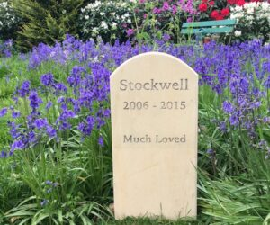 limestone standing stone pet memorial for Stockwell. In garden amongst bluebells unpainted letters roman font