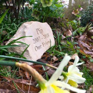 Sandstone Pet Memorial Boulder for Pip in the Garden