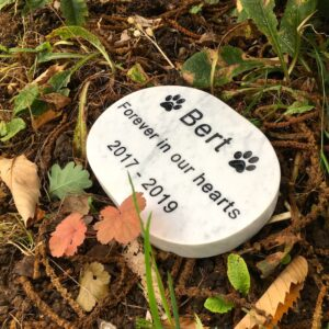 White Marble Plaque with two paw prints for Bert. This Oval Pet Memorial is Lying Flat in the Garden
