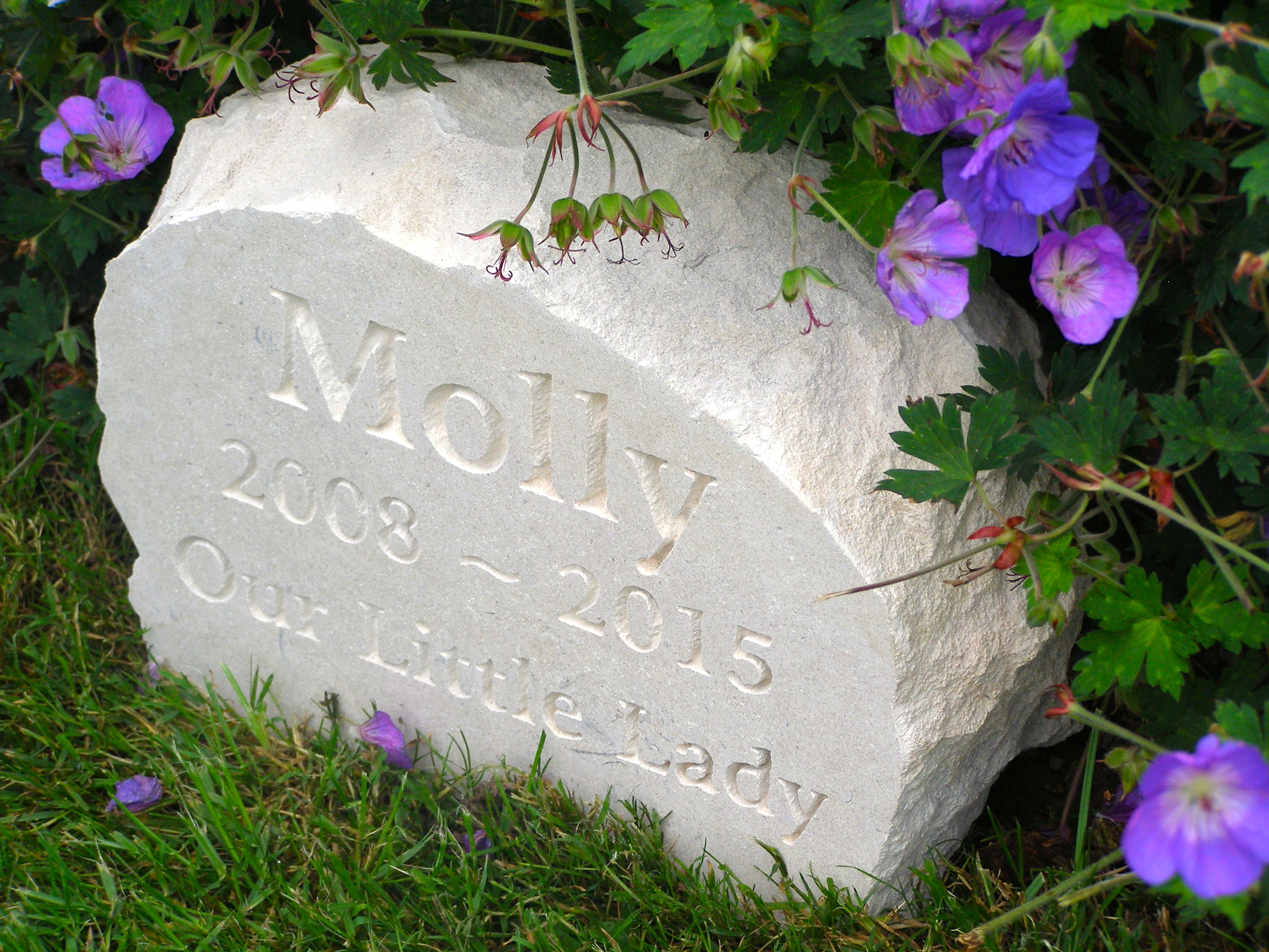 pet memorial for Molly
