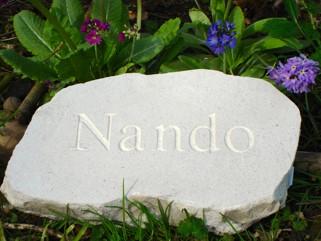 stepping stone pet memorial